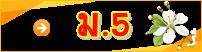 thai-m5